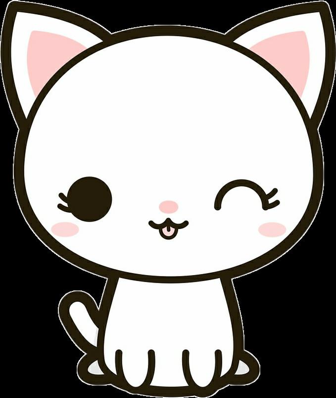 #cat #animal #cute