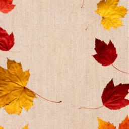 autumn freetoedit
