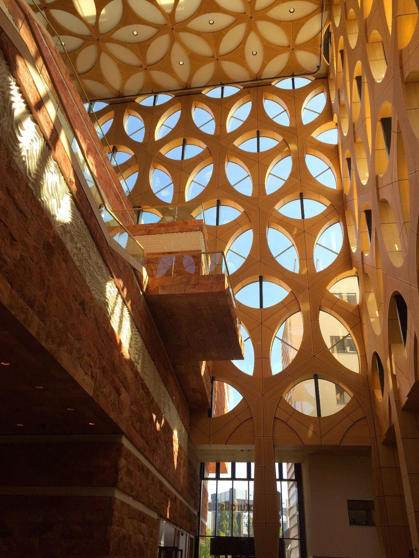 Museum Naturalis #myphoto #building #modern #freetoedit #remixit @piroskab
