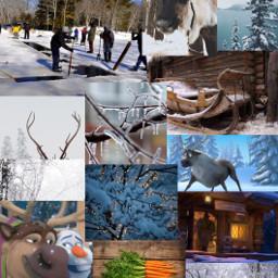 freetoedit frozen sven reindeer oofohwell