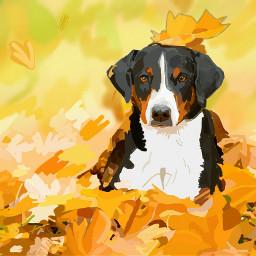 dcautumn dog autumn dogsofpicsart