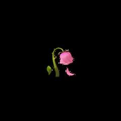flower iphone iphoneemoji emoji pink freetoedit