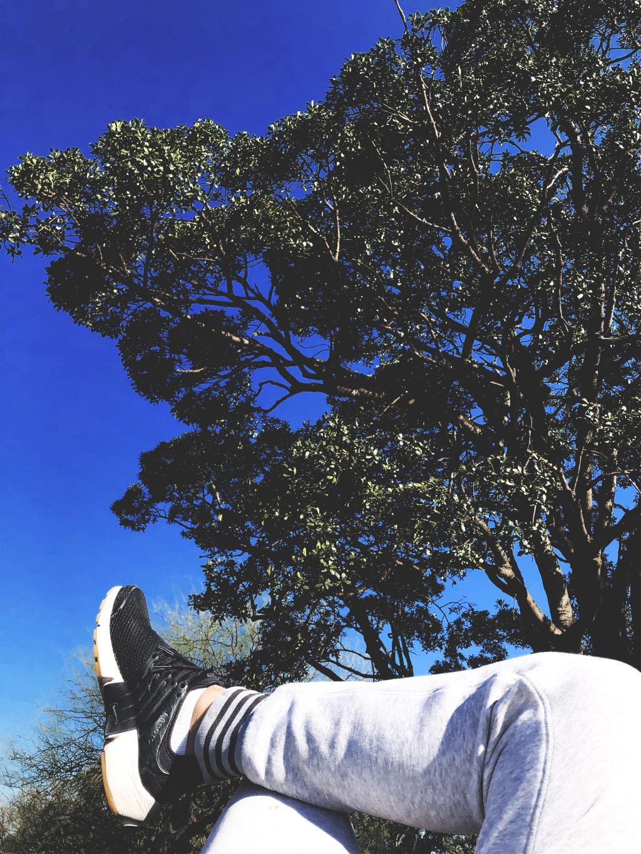#Uruguay 🇺🇾 - Parque Batlle