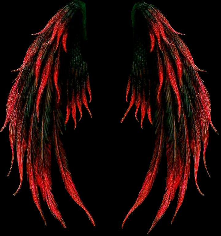 #wings #red #redwings