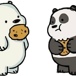 freetoedit bears webarebears bear cookie scteddybears