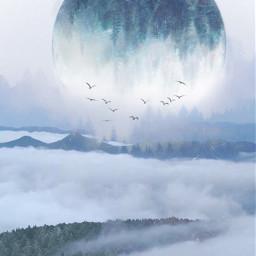 freetoedit fantasy art forest sky