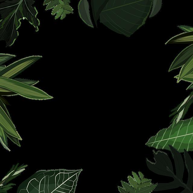 #freetoedit #nature #naturelovers #frame #marco #leaves #hojas #planta #hojasverdes #green #verde #selva #colores #plants #decor #decorative #ornament #naturesticker  #overlay #colors #lovely #look #style #naturaleza #view #garden #jardín #framesticker #beautiful #natural #natureporn