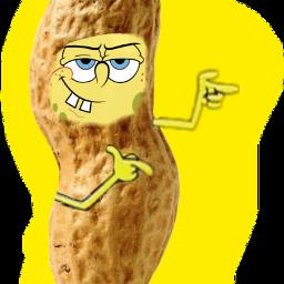 scpeanuts peanuts freetoedit