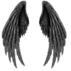 wings fly freetoedit