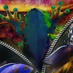freetoedit naturephotography myart contestsubmission september2019 srcremixzipper