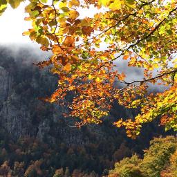 photography nature autumn pyrenees mountains freetoedit