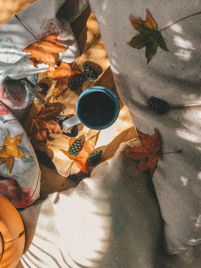 #morningcoffee #morning #septembermorning #autumncolors