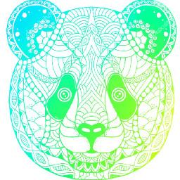colorpaint draw osopanda animal animales