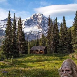 freetoedit remixit fun bigfoot trees