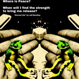 editforfun jeffbuckley eternallife toy frog
