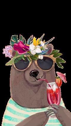 bear funny cute freetoedit