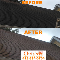 roofcleaning roofwash freetoedit