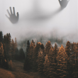 forest ghost ghoststory mountain scary freetoedit