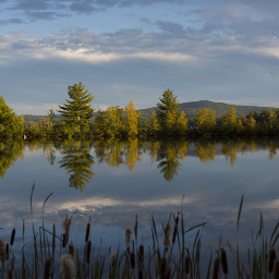 vermont lake nature fall photography