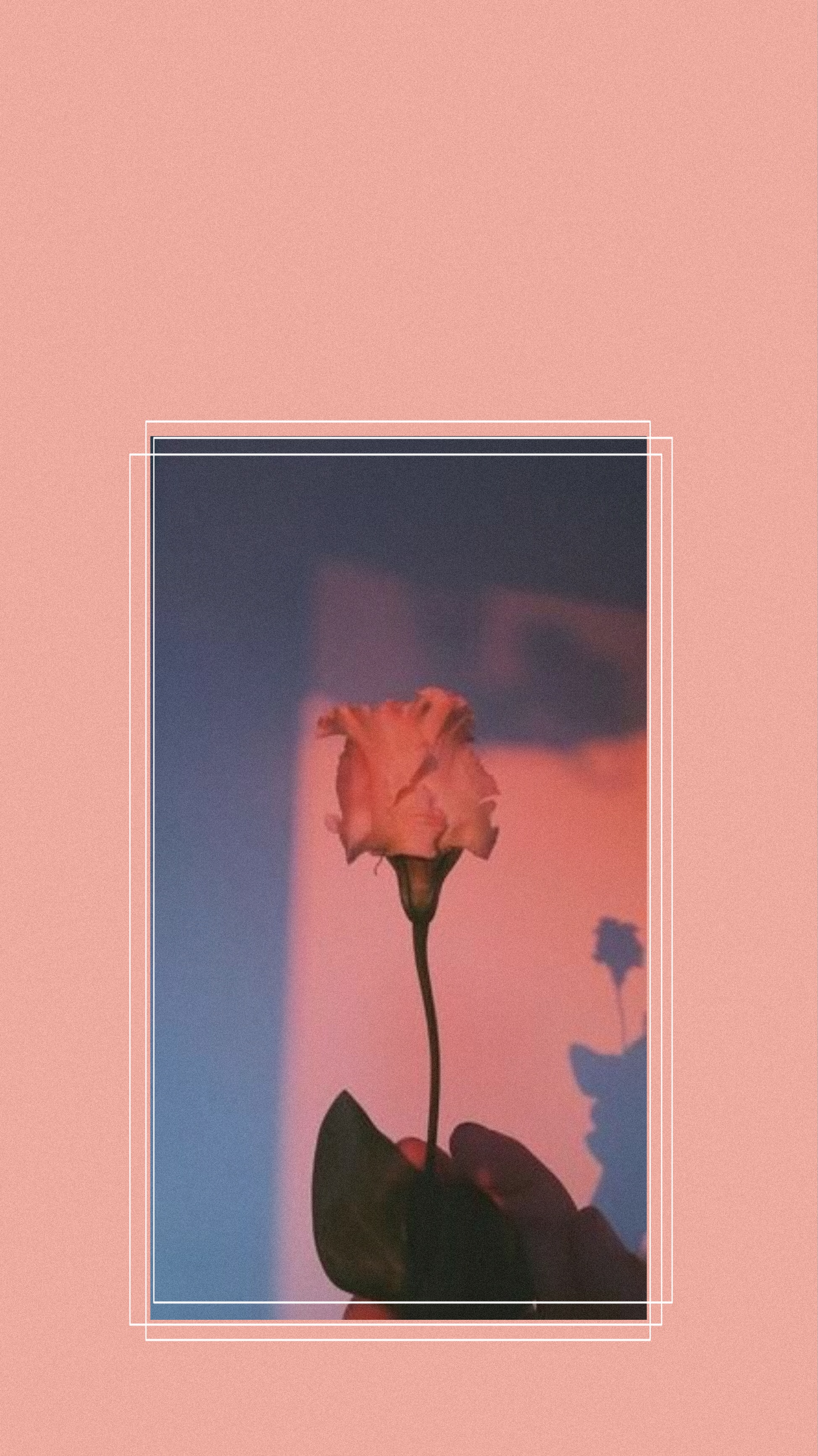 Wallpaper 80 S Retro Style Babyyyy Pink Roses Rose Aest