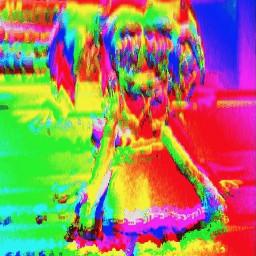 kidcore webcore clowncore edgy goth freetoedit