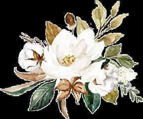 watercolor magnolias magnolia bouquet arrangement freetoedit