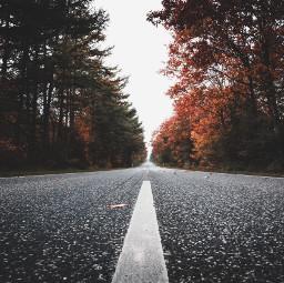 nature autumn fall road background freetoedit