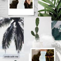 freetoedit daniellaperkins daniperkins whiteandgreen aesthetic