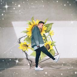ircmotion motion freetoedit sunflower sparkle