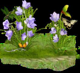 ladymc garden flowers butterfly flower freetoedit