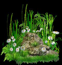 ladymc flower flowers grass garden freetoedit