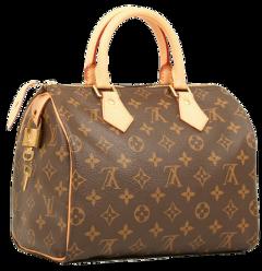 freetoedit louisvuitton louis vuitton bag