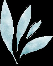 watercolor pastel blue leaf plant scrapbook freetoedit