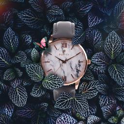 watches luxury art buy interesting freetoedit