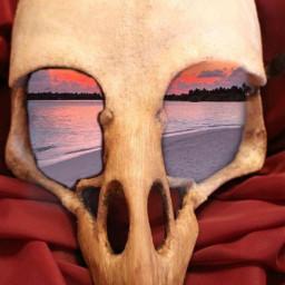 skull beech sky colorfulsunsets