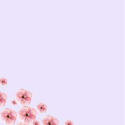 primavera spring background backgrounds freetoedit
