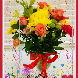 birthdaygirl flowers photography