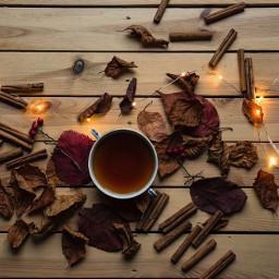 tea autumn fall cozy freetoedit