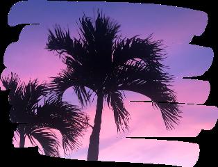 purplesky pinksky pink purple sky scribble freetoedit