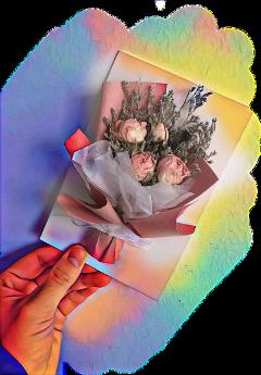 freetoedit flowers driedflowers