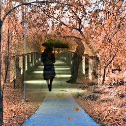 freetoedit autumn love italy interesting