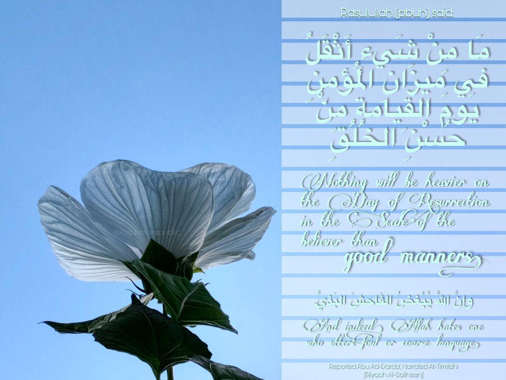 #freetoedit #wordsofwisdom #hadith #propheticwords #muslimlife #alhamdulillah #goodmanners