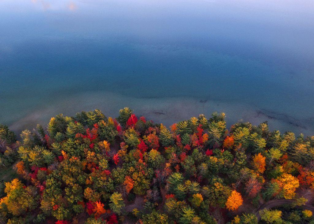 One with nature. Unsplash (Public Domain) #fall #autumn #nature #background #backgrounds #freetoedit