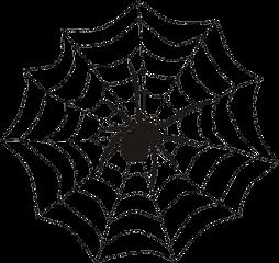 spiderweb spider web halloween sticker freetoedit