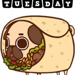 freetoedit tacotuesday sctacotuesday
