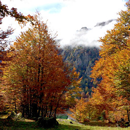 photography nature autumn france pyrenees freetoedit