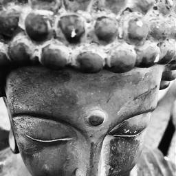 peace tranquility serenity buddha statue