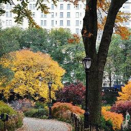 freetoedit park autumn nyc autumncolors