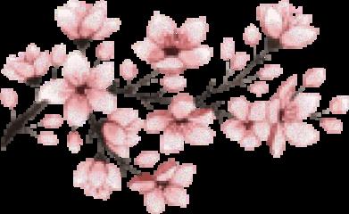 japan sakura anime tumblr bit freetoedit