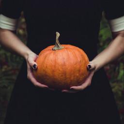 people halloween pupmkin freetoedit